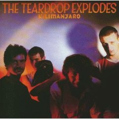 Teardrop Explodes, The